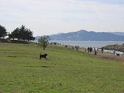 Point-Isabel-Regional-Shoreline